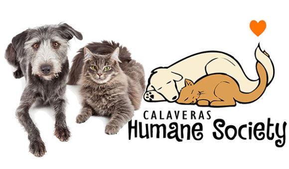 Thanks for visiting Calaveras Humane Society