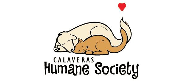CHS logo on white