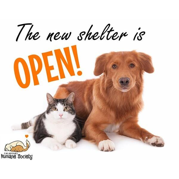 The new shelter is open, June 2020