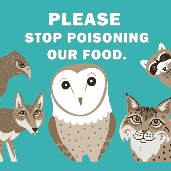 Please stop poisoning our food