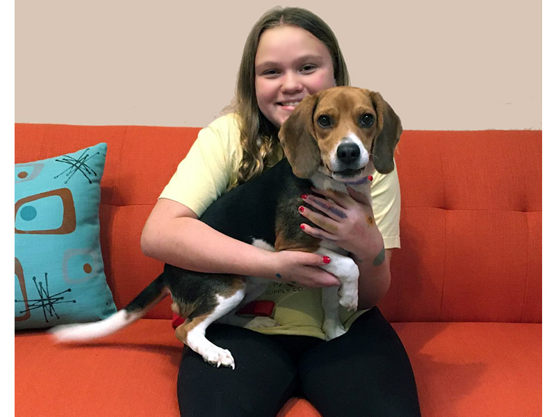 Daisy dog adopted October 2019