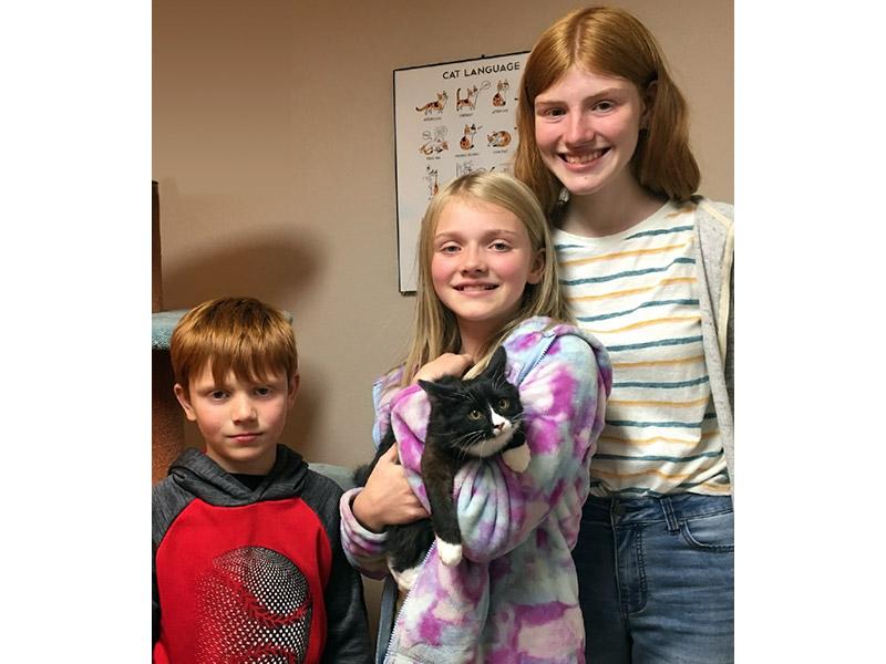 Amara cat adopted October 2019