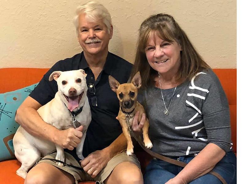Apollo dog adopted November 2019