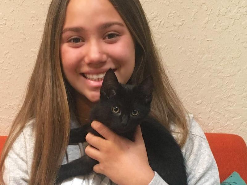 Black Jack cat adopted October 2019