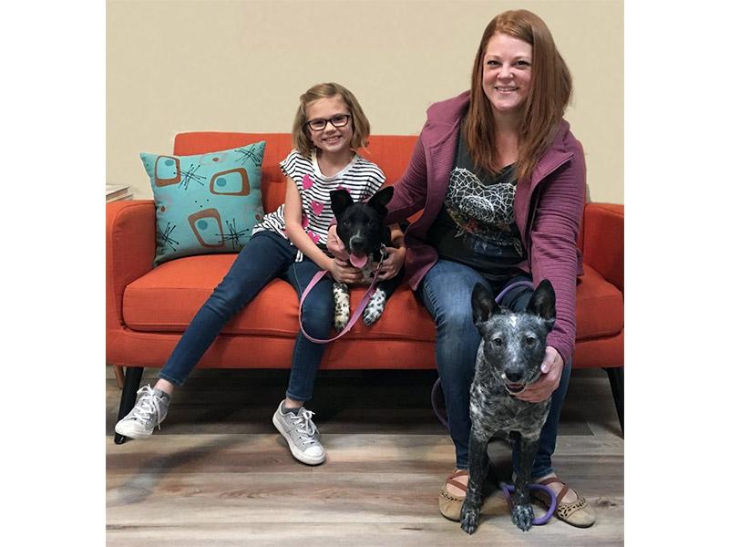 Meatball dog adopted November 2019