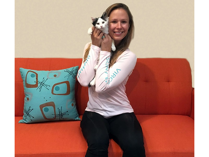 Ollie cat adopted November 2019