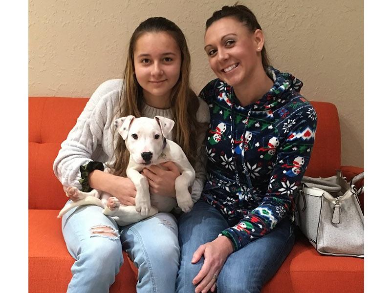 Aster dog adopted December 2019