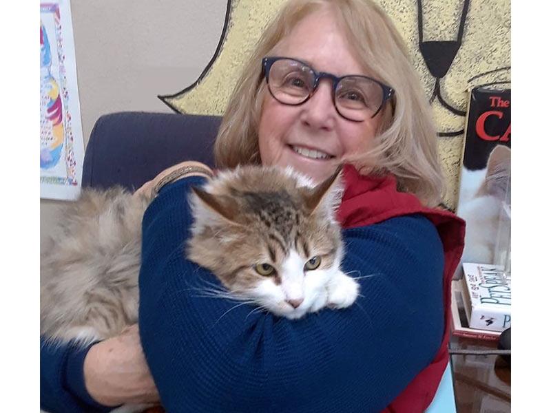 Dakota cat adopted December 2019