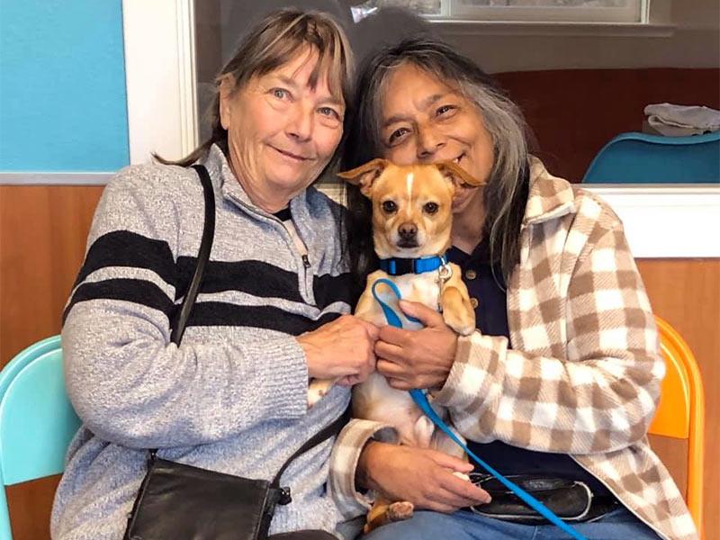 Fantom dog adopted December 2019
