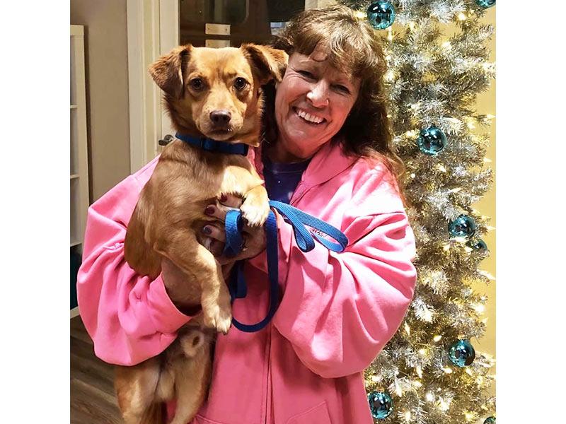 Marvin dog adopted December 2019