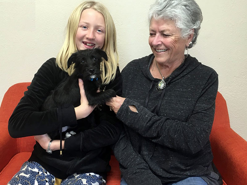 Nicky dog adopted December 2019