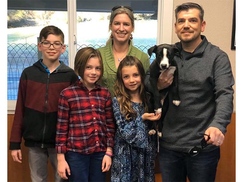 Poppy dog adopted December 2019