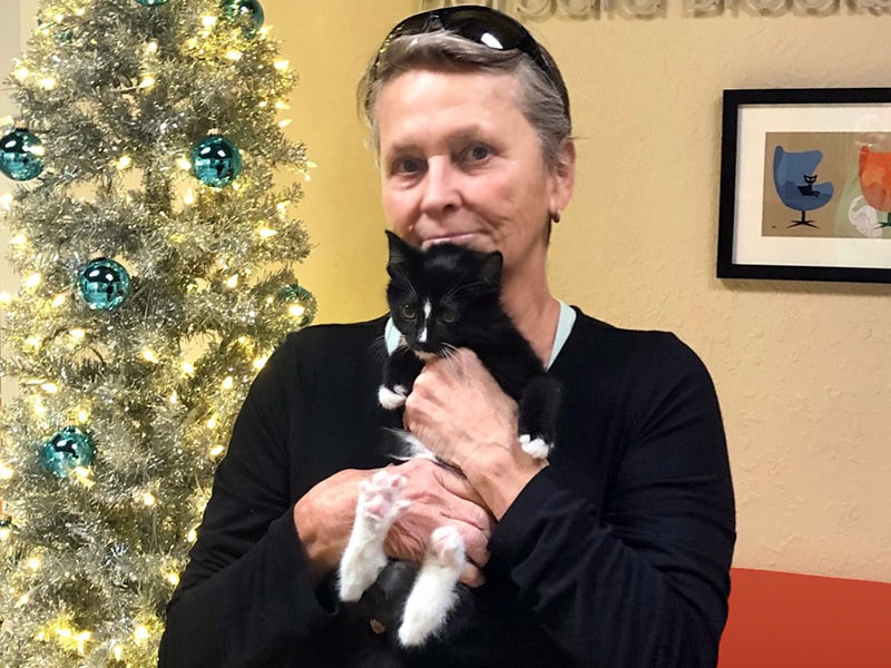 Reign cat adopted December 2019