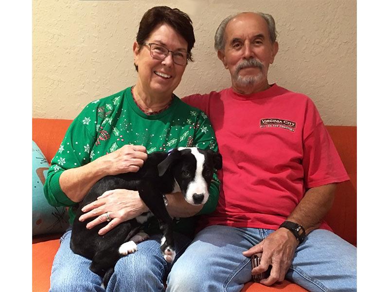 Rosie dog adopted December 2019