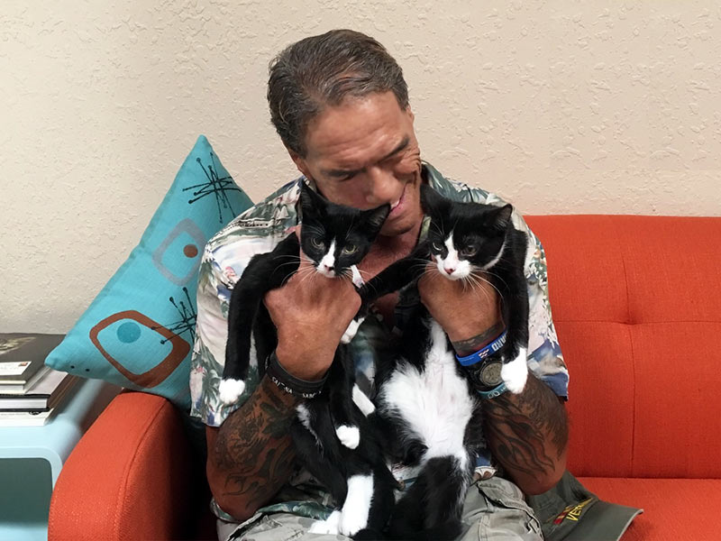 Sylvester and Tommy Boy cats adopted August 2019