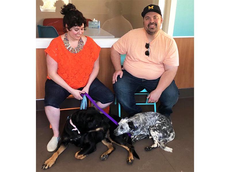 Delphi dog adopted September 2019