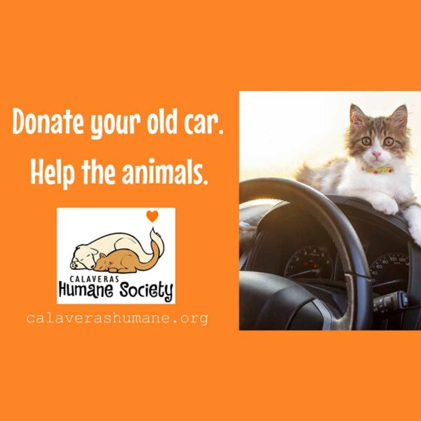 Donate an old vehicle