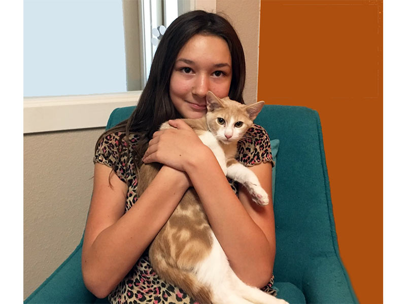 Ernesto cat adopted August 2019