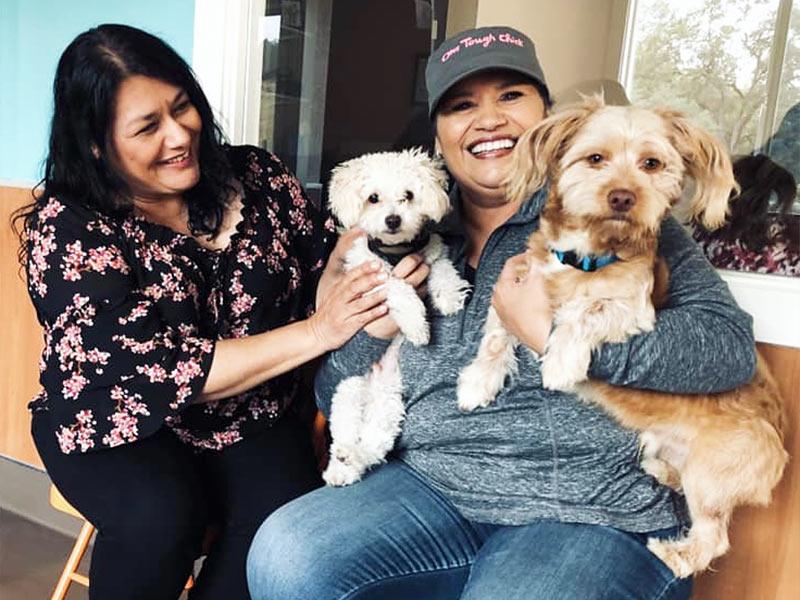 Falcor dog adopted September 2019