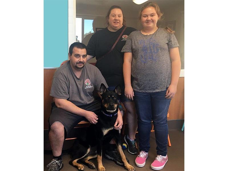 Frances dog adopted September 2019