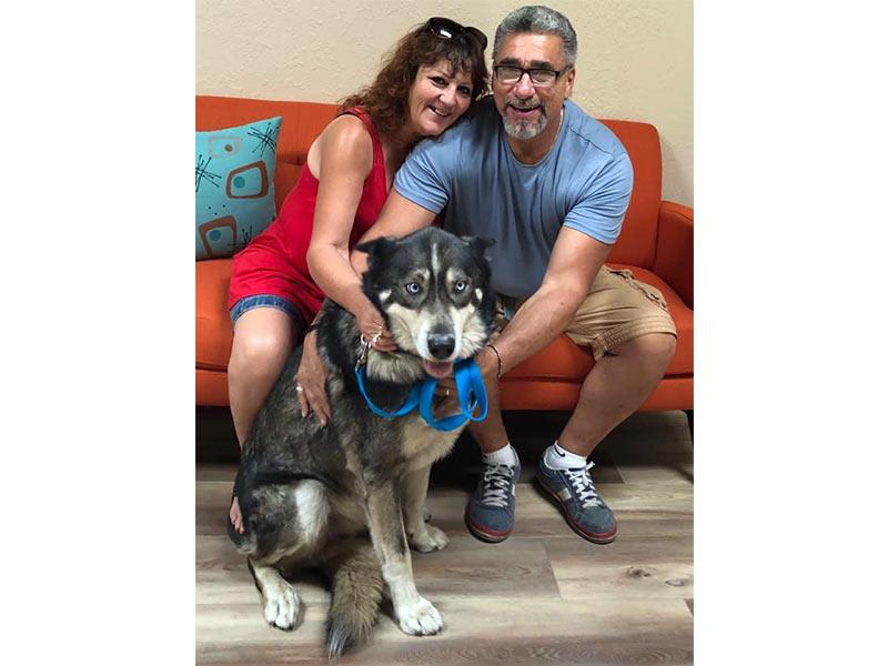 Koba dog adopted September 2019