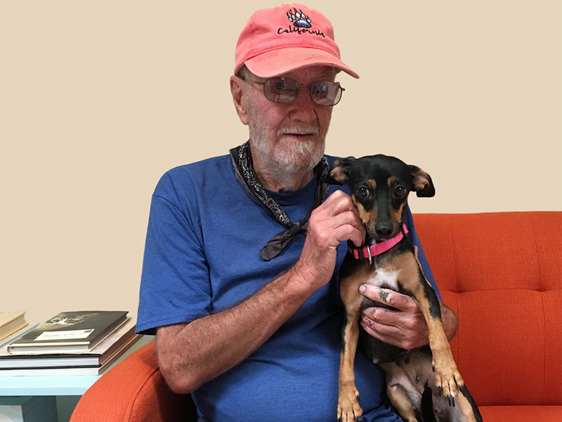 Petunia dog adopted August 2019