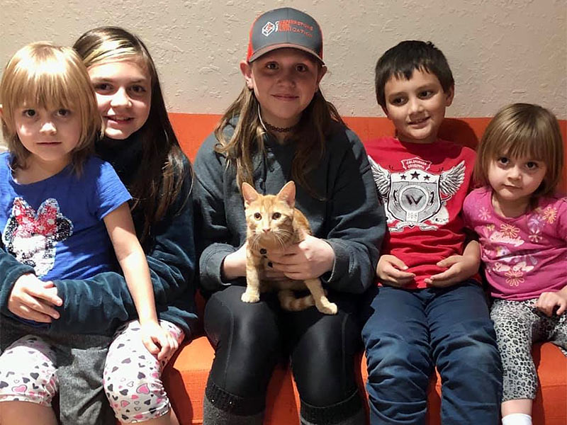 Honey cat adopted February 2020