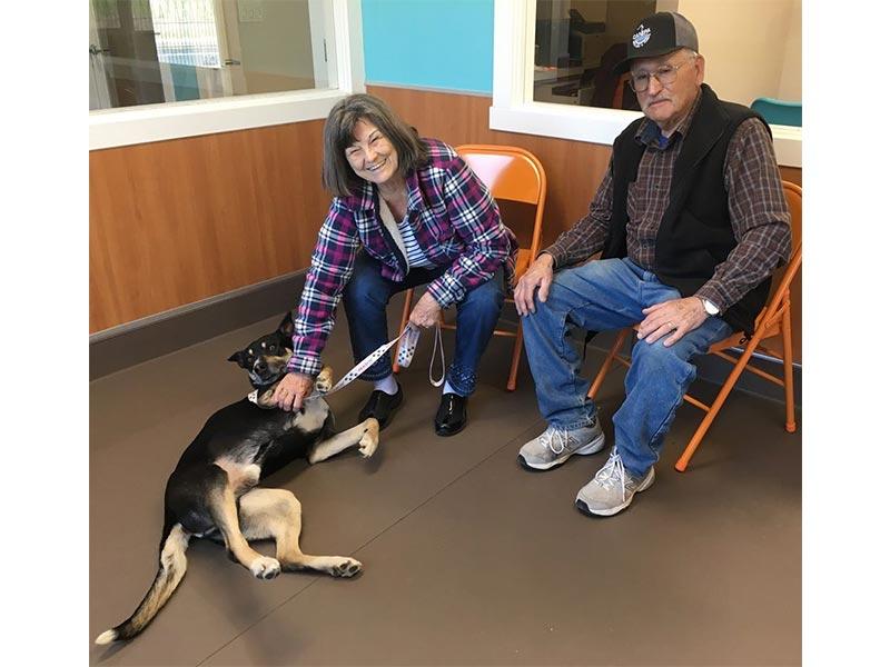 Ike dog adopted February 2020