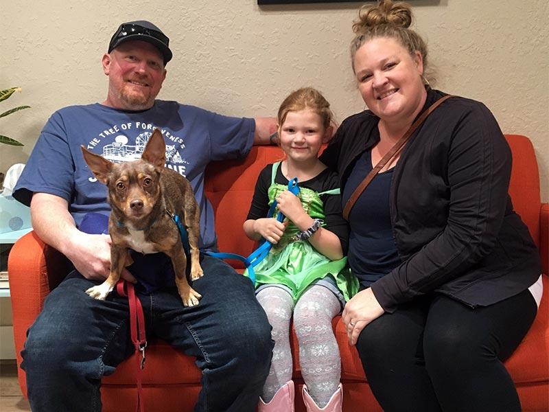 Ody dog adopted February 2020