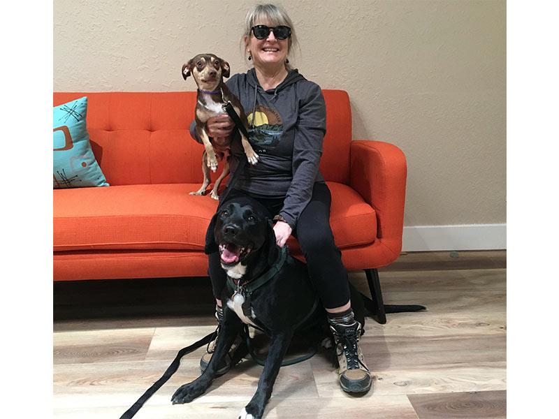 Stella dog adopted February 2020