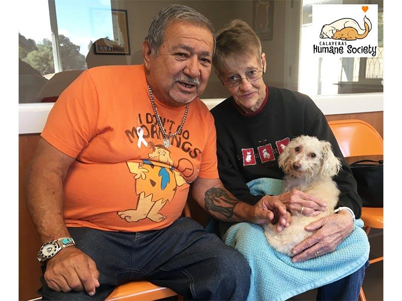 Darla dog adopted October 2019