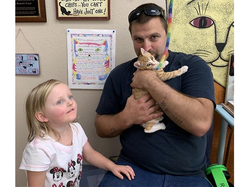 Dean Martin cat adopted October 2019