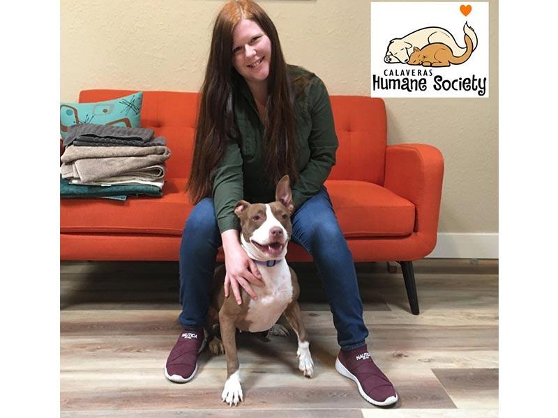 Harlee dog adopted October 2019