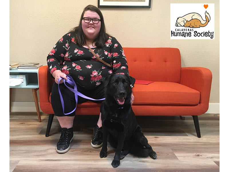 Kadie dog adopted October 2019