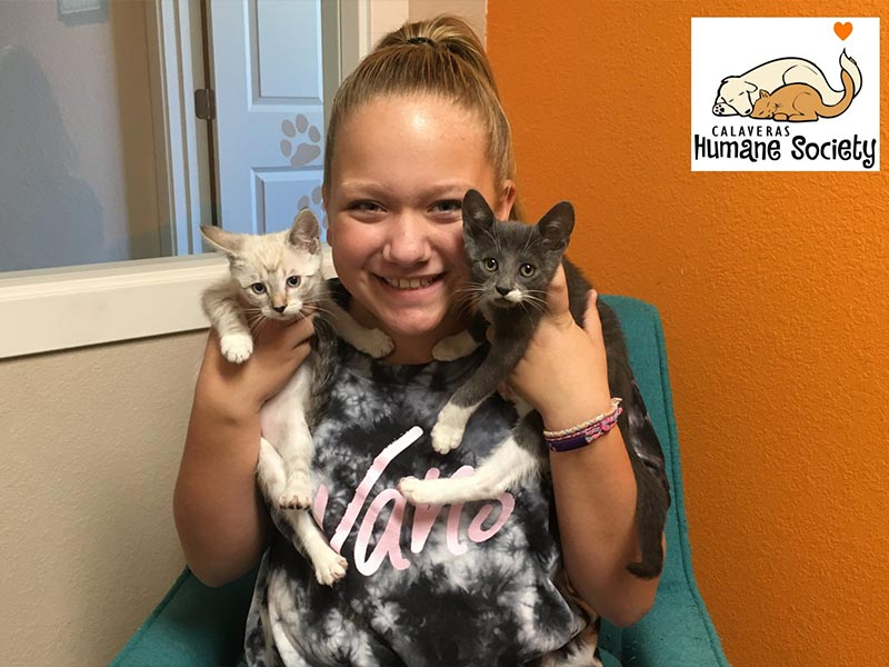 Michaela and Smokey cats adopted October 2019