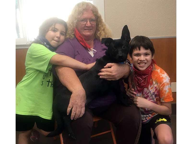 Beau dog adopted June 2020