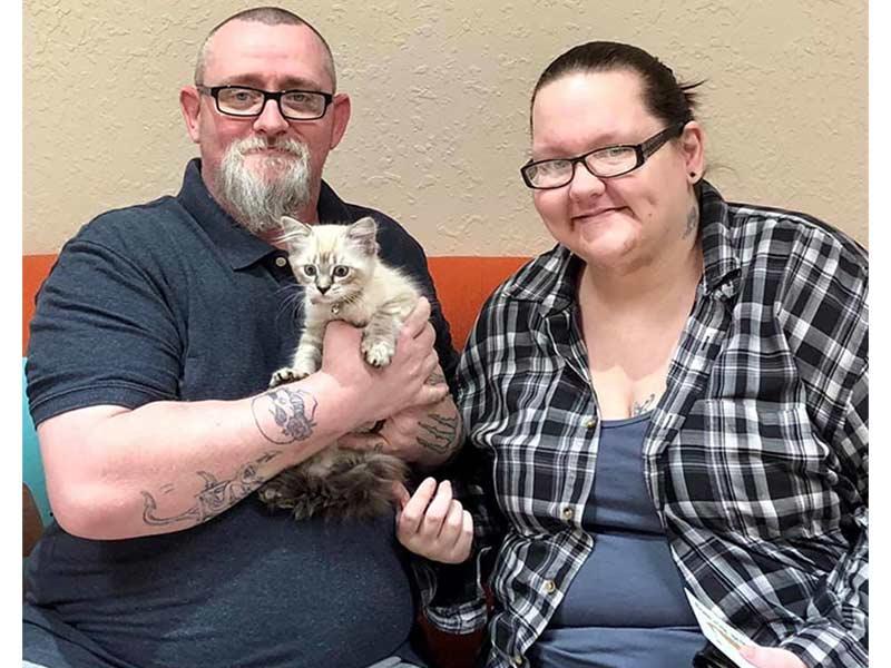Chiana cat adopted June 2020
