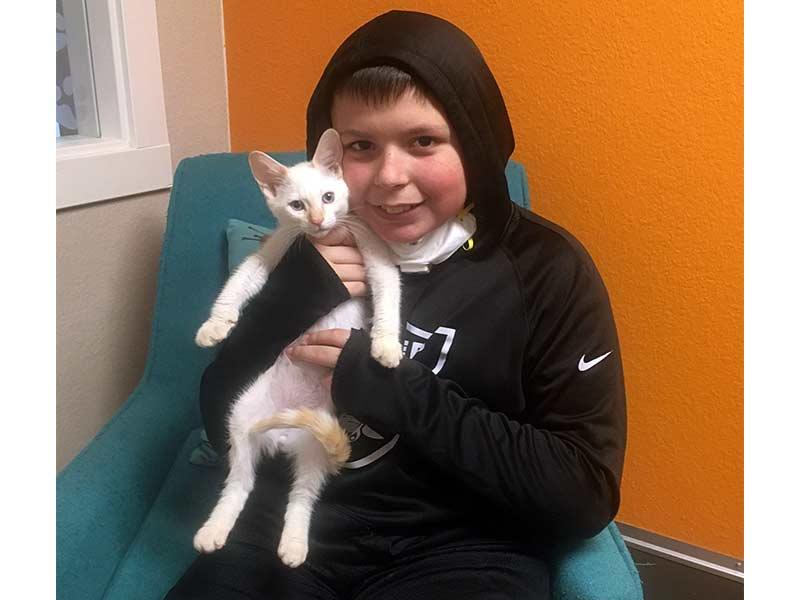 Milo cat adopted June 2020