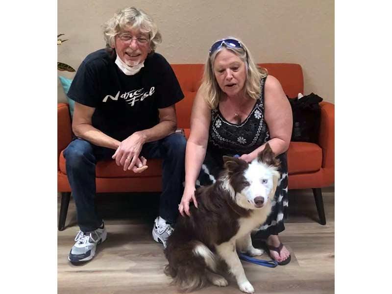 Ripper dog adopted June 2020