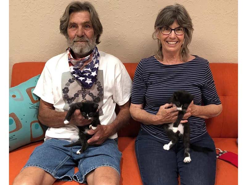 Tank and Argent cats adopted June 2020