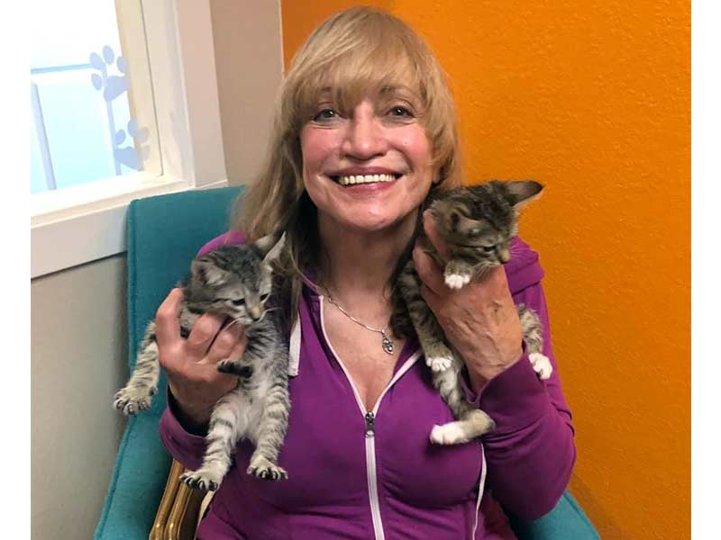 indy and tippy cats adopted July 2020