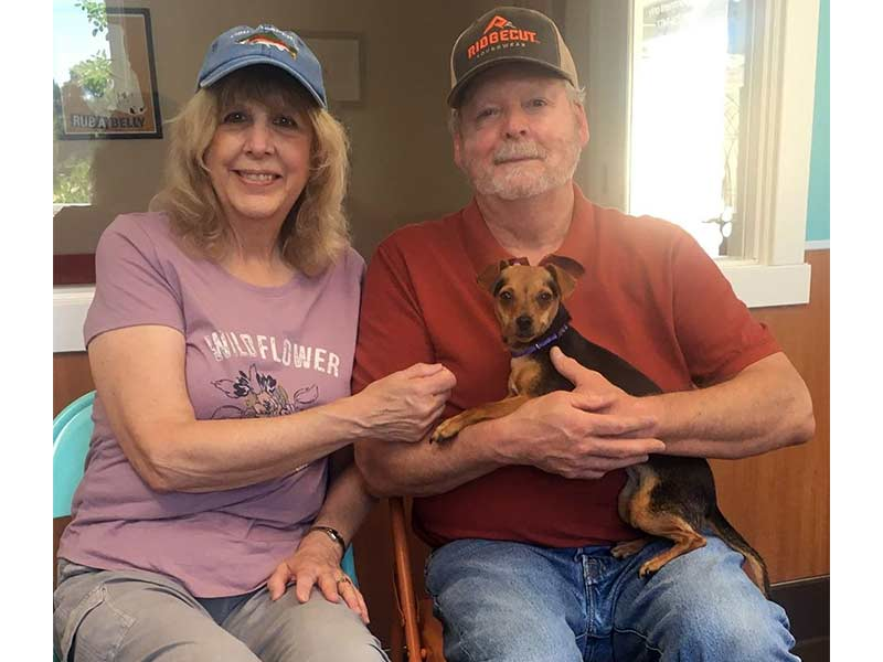 Lyla dog adopted July 2020