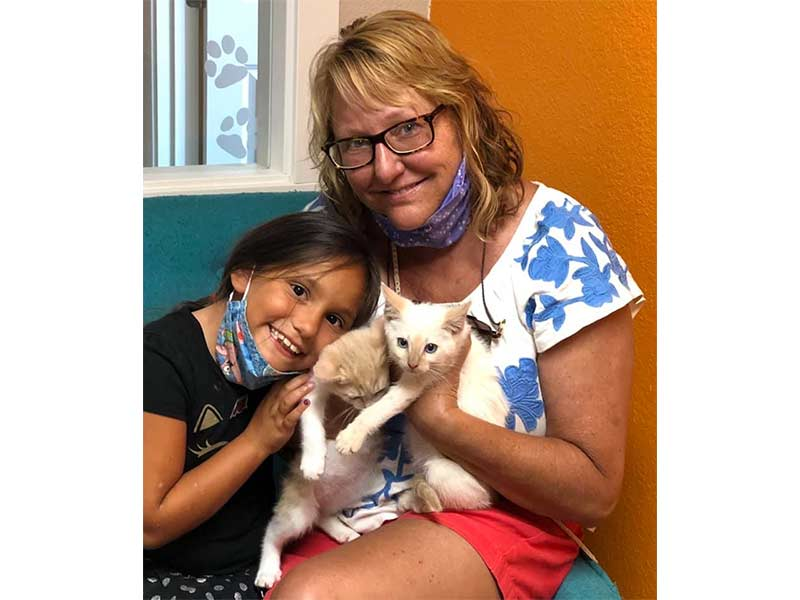 Nico and Ivory cats adopted July 2020