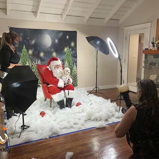 Janice Carabine taking holiday pet photos