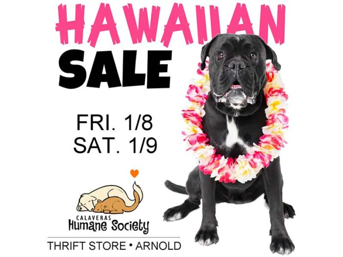 Arnold Thrift Store Hawaiian Sale January 8th and 9th