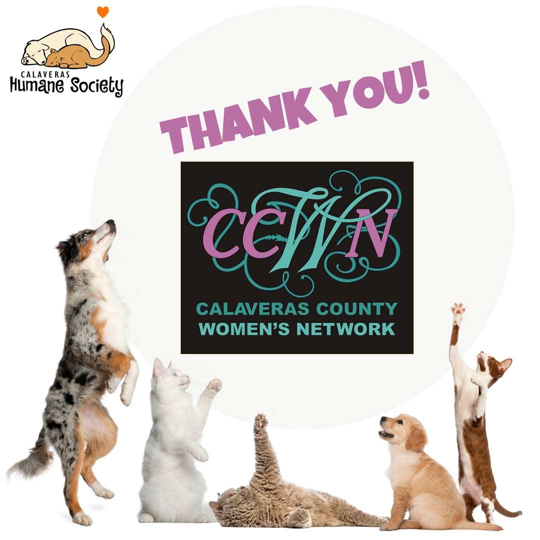 Thank you, Calaveras County Women's Network