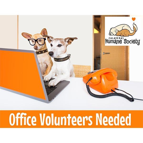 Office Volunteers Needed In Angels Camp