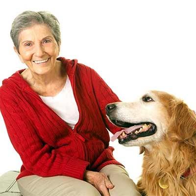 Half off adoptions fees when senior citizens adopt senior pets