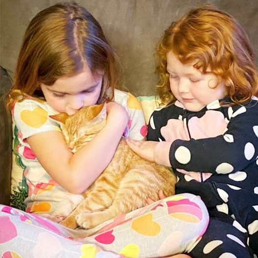Archie cat adopted January 3 2021