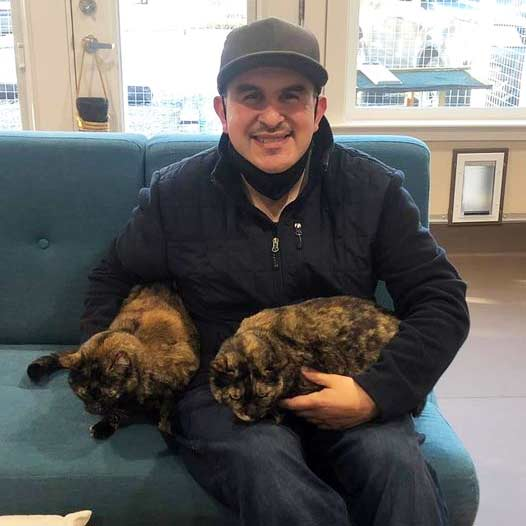 Biscuit and Button cats adopted January 29 2021